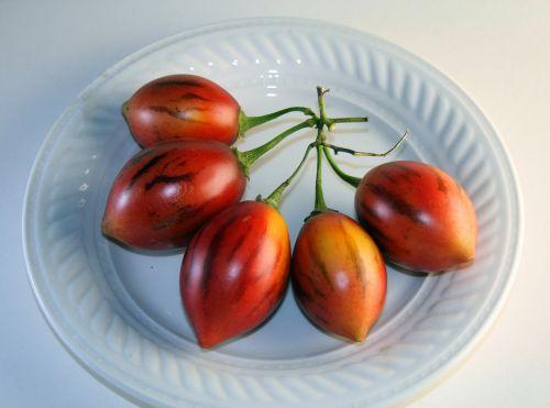 Tree Tomato Fruit