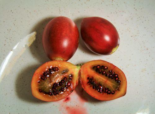 Tree Tomato Fruit In Bowl