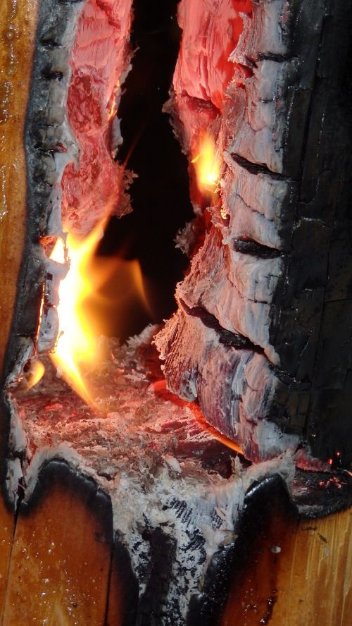 tree torch fire mood
