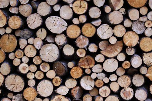 medžių kamienus,serijos,mediena