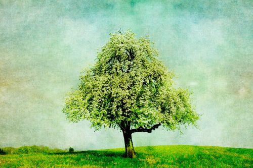Tree Vintage Painting