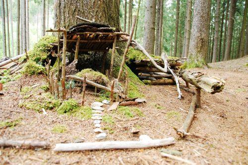 treehouse artfully moss