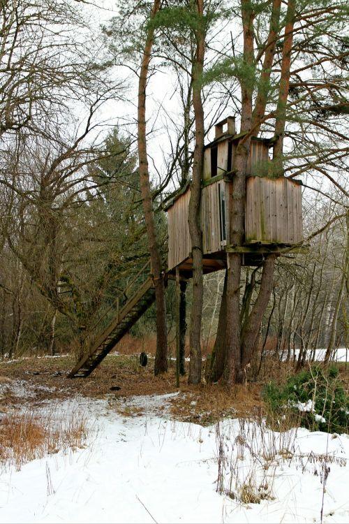 treehouse tree tree hut