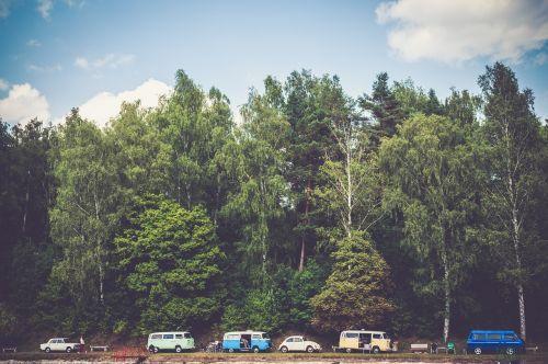 trees cars vans