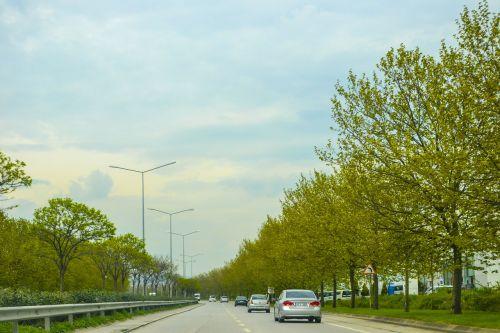 kelias,ilgas kelias,medis,medžiai,transporto priemonė,eismas,dangus,kraštovaizdis,debesys