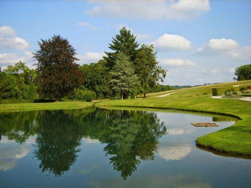 trees garden pond