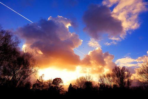 medžiai,medžio siluetai,mėlynas dangus,aukso dangus,vakaro saulė,dramos dangus,debesys,aukso švytėjimas,cloudscape,šviesus