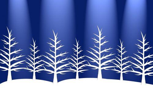 trees winter holiday