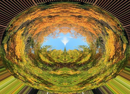 Trees In Oval Glass Abstract