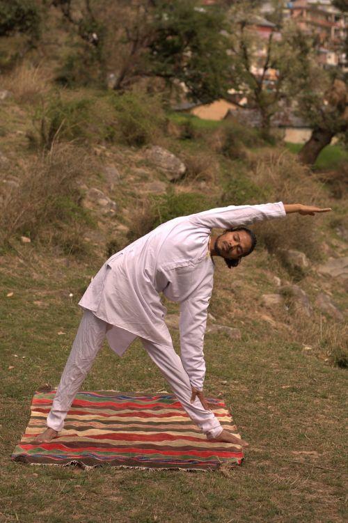 triangle pose yoga asana yoga