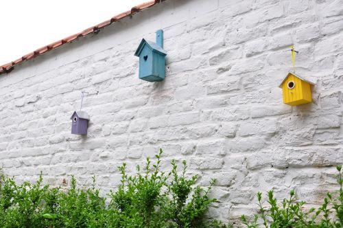 triangular composition birdhouse buxus