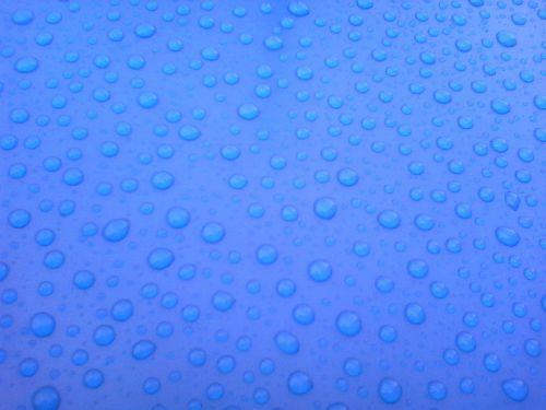 trickle parasol non