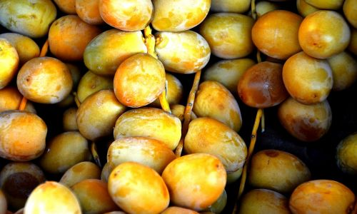 tropical fruit dates left untreated