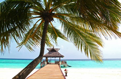 Tropical Seascape Resort