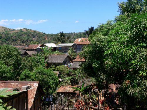 Tropical Shanty Village