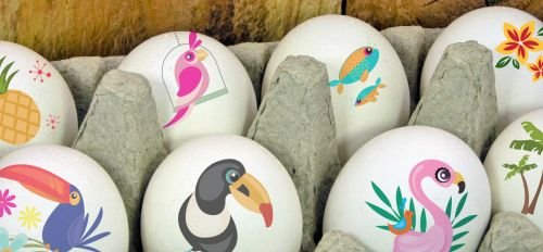 Tropics Easter Eggs