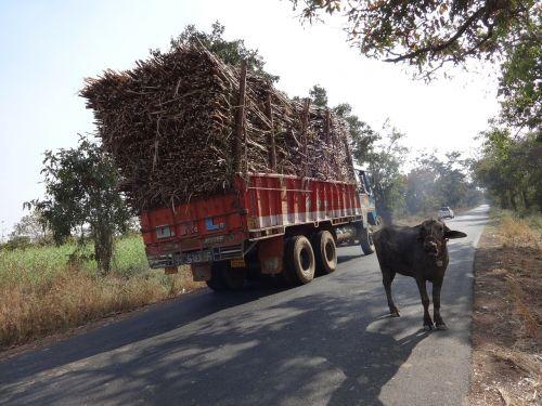truck overcharge cargo