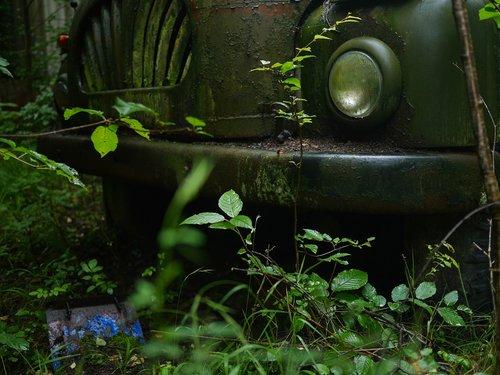 truck  lost  nature