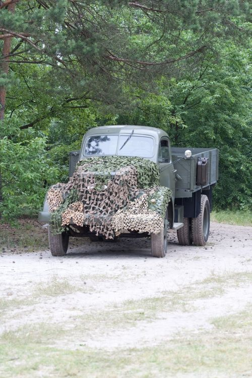 truck the military forest