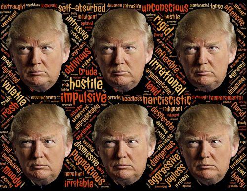 trump trumpism candidate