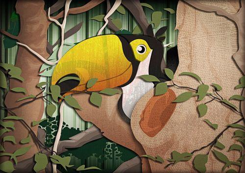tucano bird tropical