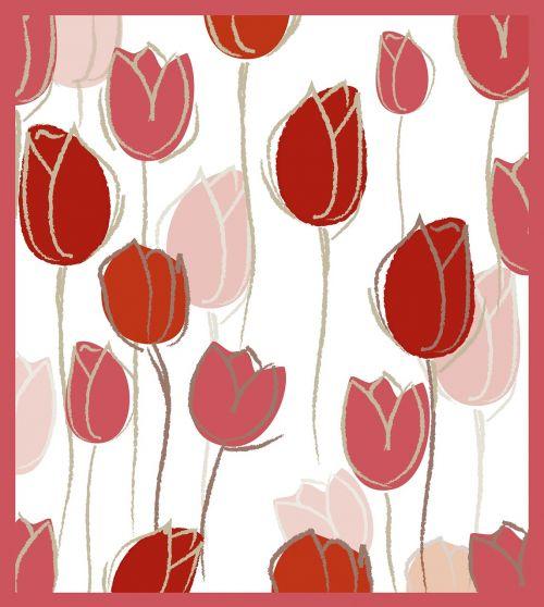 pink tulips tulpenbluete