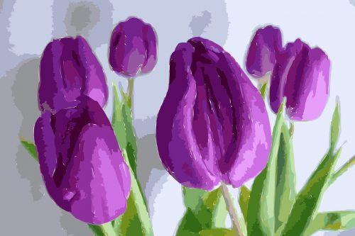 tulips painting blossom