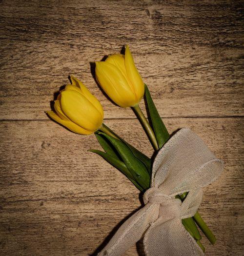 tulips flowers yellow flowers