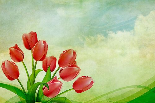 Tulips Vintage Painting