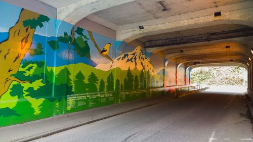 tunnel wall painting seattle