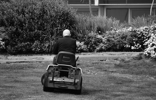 turf mowing lawn mower