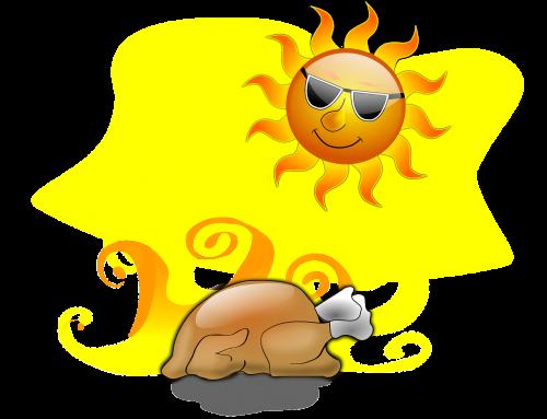 turkey roasting roast