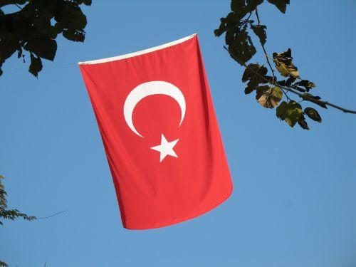 Turkija,istanbulas,vėliava,raudona,vėliavos,patriotinis