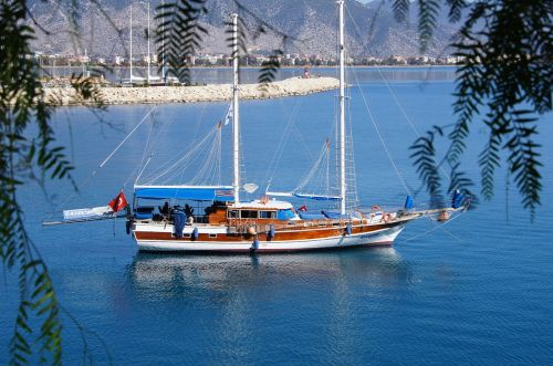 turkey booked ship