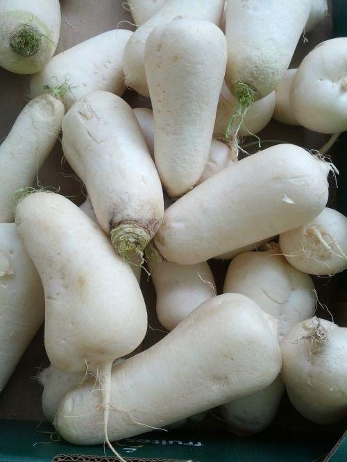 turnip vegetables white turnip