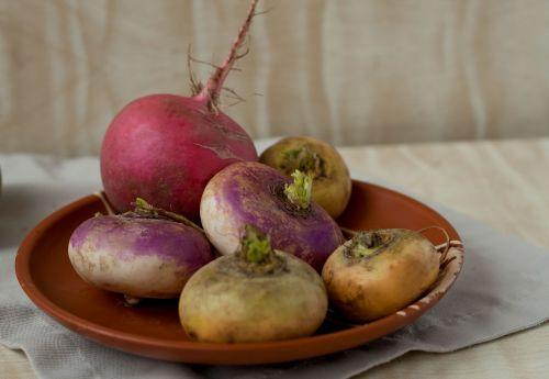 turnip radish plate