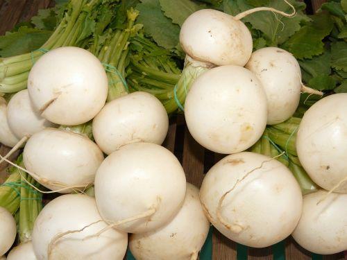 turnip nevett vegetable plant