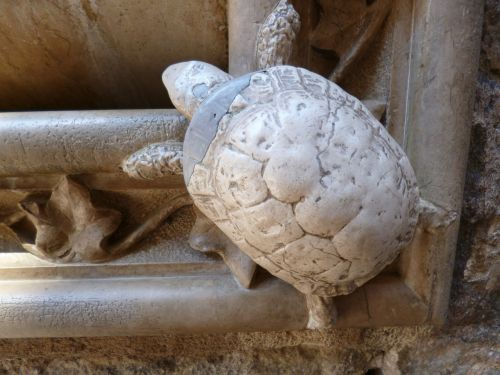 turtle stone ornament