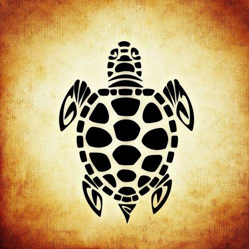turtle panzer animal