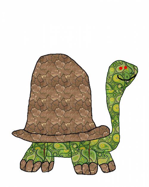 Turtle Doodle