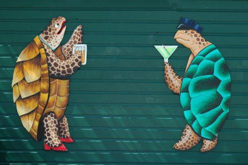 Turtles On Wall