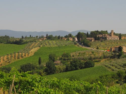 tuscany agriculture winegrowing