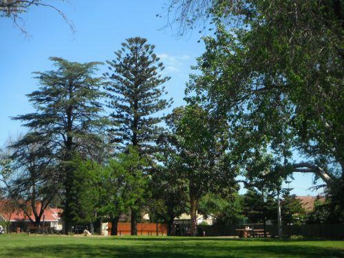 Tusmore Park