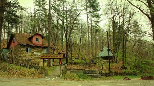 tuzla bosnia forest
