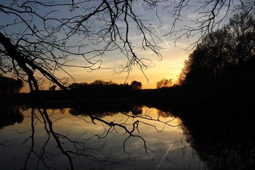 twilight  sunset  horizon