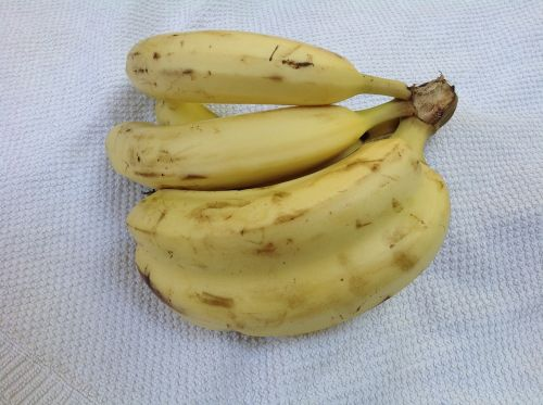 twin banana twin banana