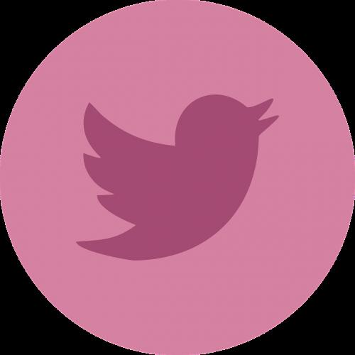 twitter social media social