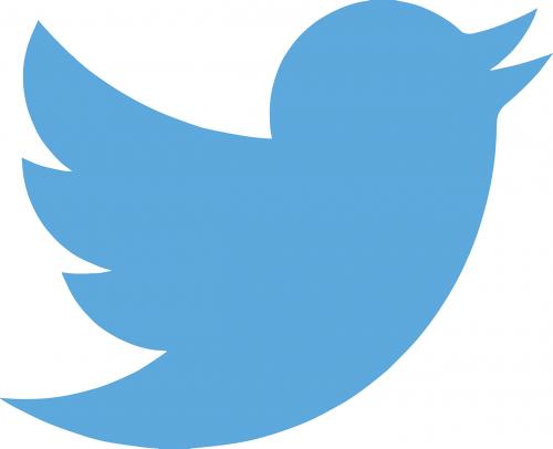twitter tweet twitter bird