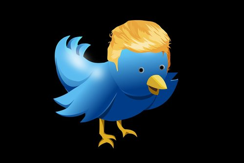 twitter  hairstyle  trump