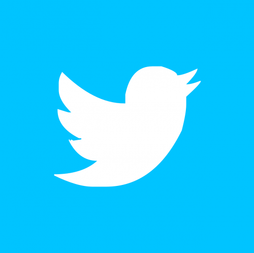 twitter pin button
